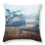 Big Meadows In Winter Throw Pillow by Thomas R Fletcher