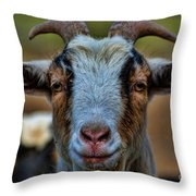 Billy Goat Throw Pillow by Paul Ward