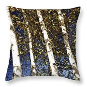 Birch Trees In Fall Throw Pillow by Elena Elisseeva