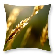 Blowing In The Wind Throw Pillow by Thomas R Fletcher