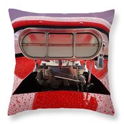 Blown Throw Pillow by Alan Hutchins