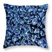 Blue ... Throw Pillow by Juergen Weiss
