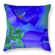 Blue Bell Flowers Throw Pillow by Kathy Yates