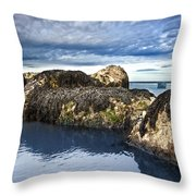 Blue Waters Throw Pillow by Svetlana Sewell