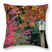 Bluebird House Color Surround Throw Pillow by Sandi OReilly