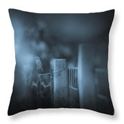 Bluebird Throw Pillow by Kim Henderson
