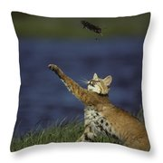 Bobcat Toys With Vole Throw Pillow by Michael S. Quinton