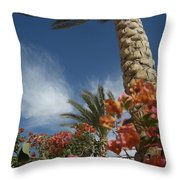 Bougainvillea Flowers Surround A Palm Throw Pillow by Richard Nowitz
