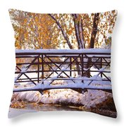 Bridge Over Icy Waters Throw Pillow by James BO  Insogna