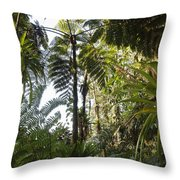 Bromeliad And Tree Ferns Throw Pillow by Cyril Ruoso