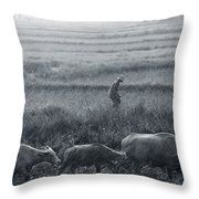 Buffalo And Monsoon Rain Throw Pillow by Anonymous