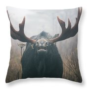 Bull Moose Testing Air For Pheromones Throw Pillow by Philippe Henry