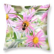 Bumble Bee On Asters Throw Pillow by Lena Auxier