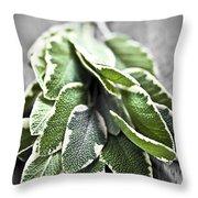 Bunch Of Fresh Sage Throw Pillow by Elena Elisseeva