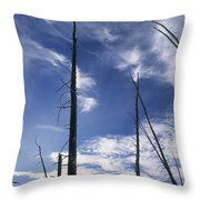 Burnt Trunks Of Black Spruce, Boggy Throw Pillow by Darwin Wiggett