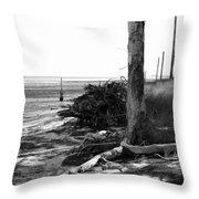 Bwhurricane Damage Throw Pillow by Judy Hall-Folde
