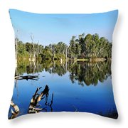By The River Throw Pillow by Kaye Menner