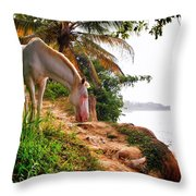 Caballo Blanco Throw Pillow by Skip Hunt