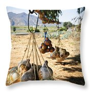 Calabash Gourd Bottles In Mexico Throw Pillow by Elena Elisseeva