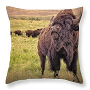 Call Of The Bison Throw Pillow by Tamyra Ayles