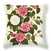 Camellia Throw Pillow by English School