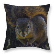 Can I Eat The Camera Throw Pillow by Heiko Koehrer-Wagner