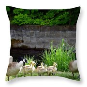 Canada Geese With Goslings Throw Pillow by Will Borden