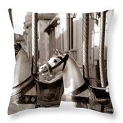 Carcassone Ride Throw Pillow by Robert Lacy