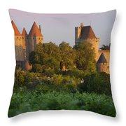 Carcassonne Dawn Throw Pillow by Brian Jannsen