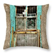 Cat in the Window Throw Pillow by David Patterson