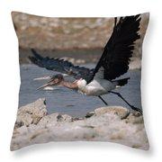 Catch-as-catch Can Is Etoshas Throw Pillow by Des &Amp Jen Bartlett