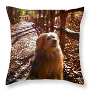 Charlie Throw Pillow by Doug Kreuger