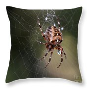 Charlottes Bigger Friend Throw Pillow by Bob Christopher