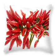 Chili Peppers Throw Pillow by Fabrizio Troiani