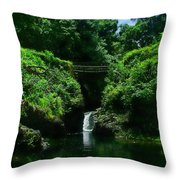 Chings Pond  Throw Pillow by Ken Smith