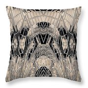 Chrome Throw Pillow by Tim Allen