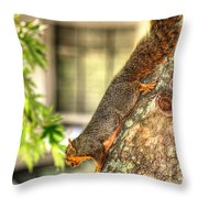 Climbing Down Throw Pillow by Ester  Rogers