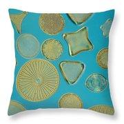 Close View Of Diatoms Throw Pillow by Darlyne A. Murawski