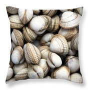 Cockle Shell Background Throw Pillow by Jane Rix