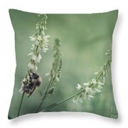 Collecting The Summer Throw Pillow by Priska Wettstein