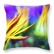 Colorful Flowers Throw Pillow by Sumit Mehndiratta