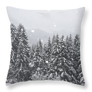 Coniferous Forest In Winter, Alps Throw Pillow by Konrad Wothe