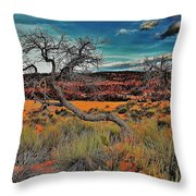 Coral Dunes Throw Pillow by Benjamin Yeager