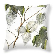 Cotton Plant, 1796 Throw Pillow by Granger
