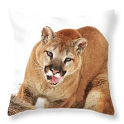 Cougar With Prey Throw Pillow by Richard Wear