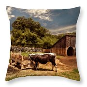 Country Life Throw Pillow by Lourry Legarde