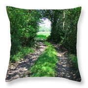 Country Road Throw Pillow by Carol Groenen