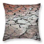 Cracked Earth Throw Pillow by Athena Mckinzie
