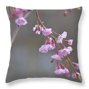 Crepe Myrtle Throw Pillow by Lisa Phillips