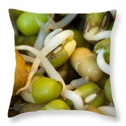 Cross Section Of Some Healthy Sprouts Throw Pillow by Ashish Agarwal